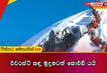 Kovid-also-climbs-Mount-Everest