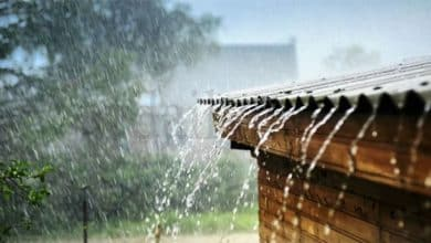 Showers exceeding 75 mm at several places in the island